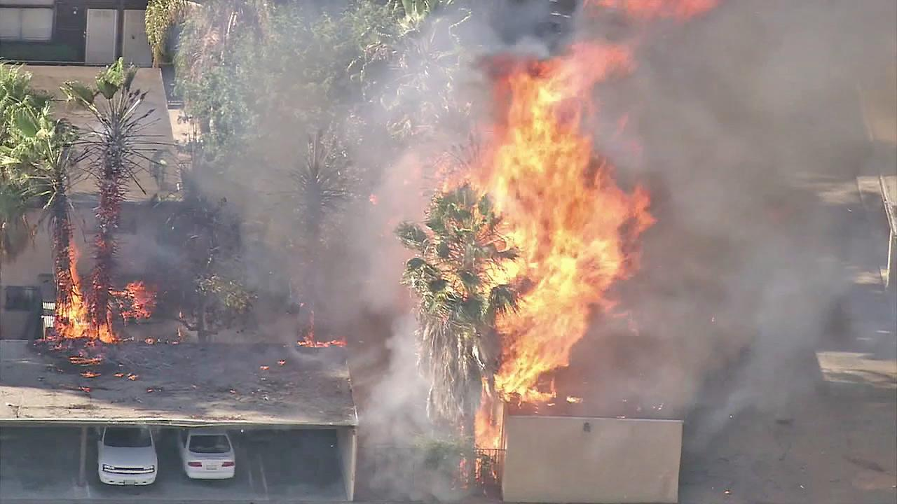 Palm trees and part of a car port are seen on fire at an apartment building in North Hills on Thursday, July 19, 2012.