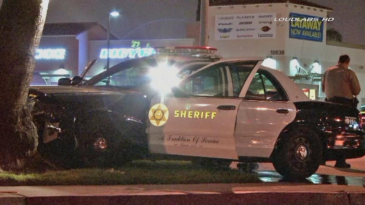 A Los Angeles County Sheriffs Department vehicle is shown slammed into a tree in Lynwood on Friday, April 26, 2013.