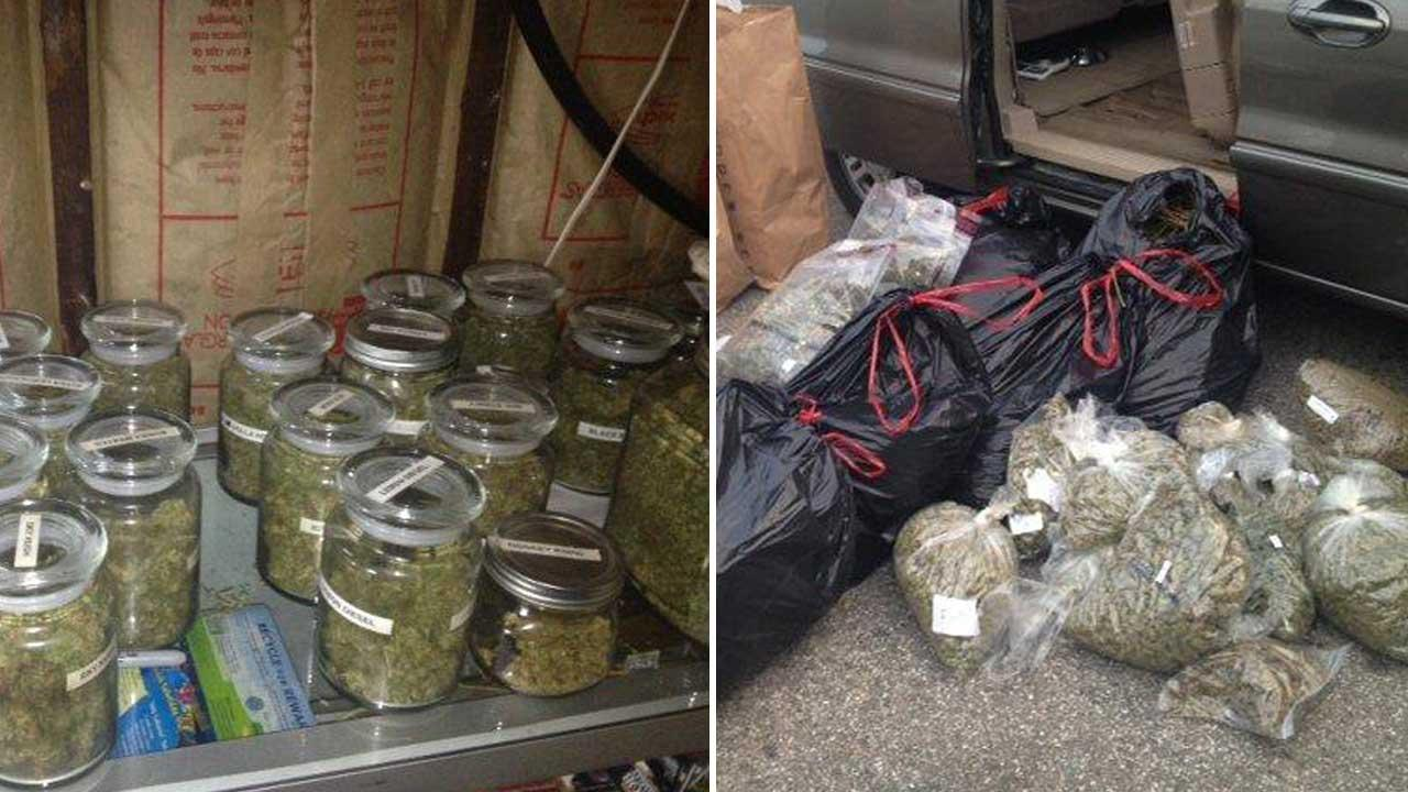 Police seized nearly 100 pounds of marijuana from a home on the 2000 block of Noble View Drive in Rancho Palos Verdes on Thursday, May 16, 2013.