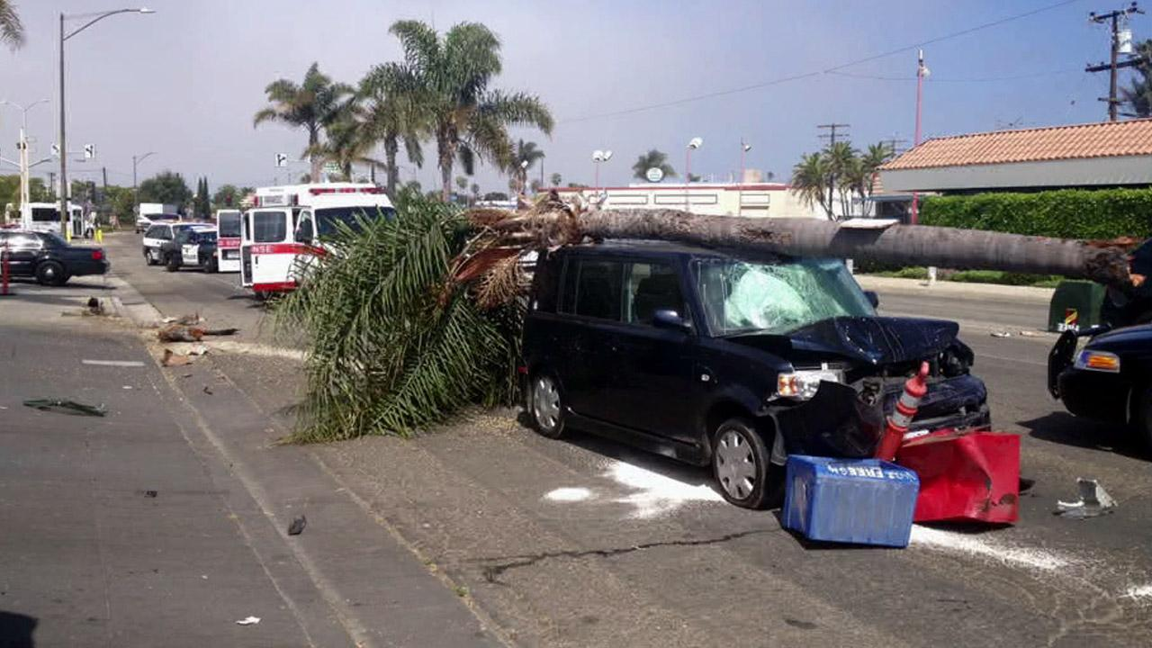 Police say a 69-year-old woman struck a pedestrian with her car, went off road and knocked down a tree and newspaper stand on Saturday, July 21, 2012.