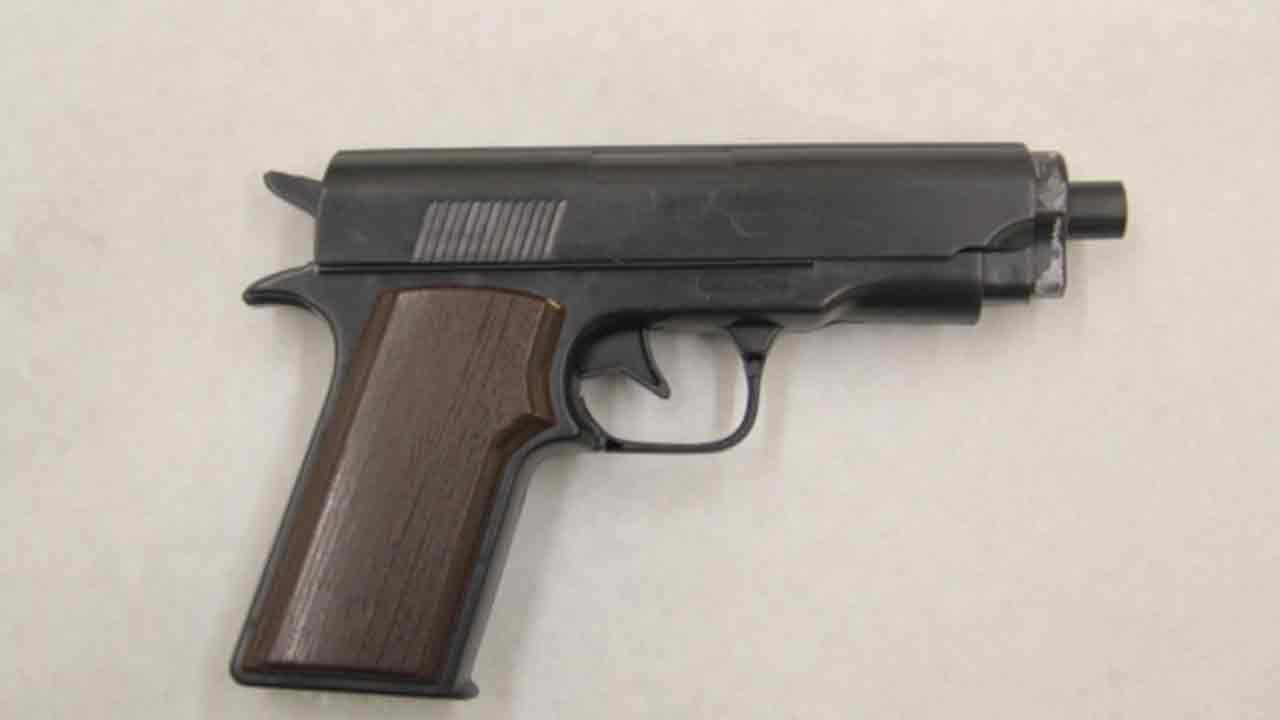 A woman who was shot by Oxnard Police Department officers in Del Sol Park on Wednesday, Feb. 5, 2014 was in possession of two replica firearms. One of the firearms is pictured above.