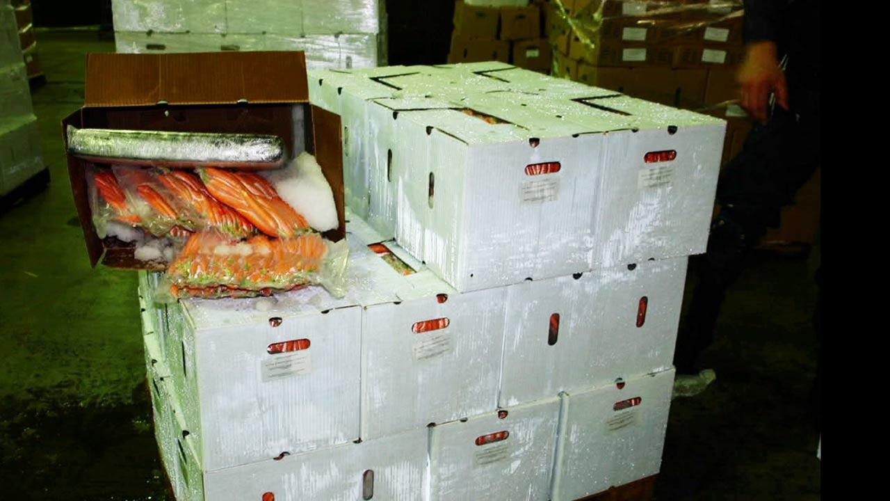 Eight-hundred pounds of marijuana, worth an estimated $1.1 million, was found hidden in a shipment of carrots Thursday, Aug. 16, 2012.