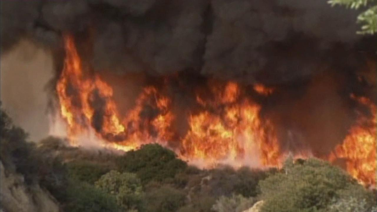 A vegetation fire burns in the Inland Empire.
