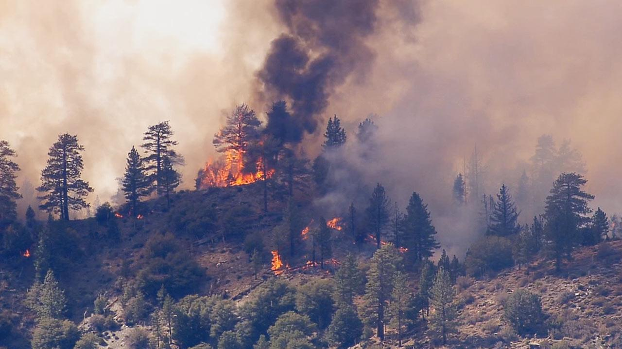 A brush fire was reported in the Angeles National Forest near Wrightwood at 12:13 p.m. Thursday, August 8, 2013.