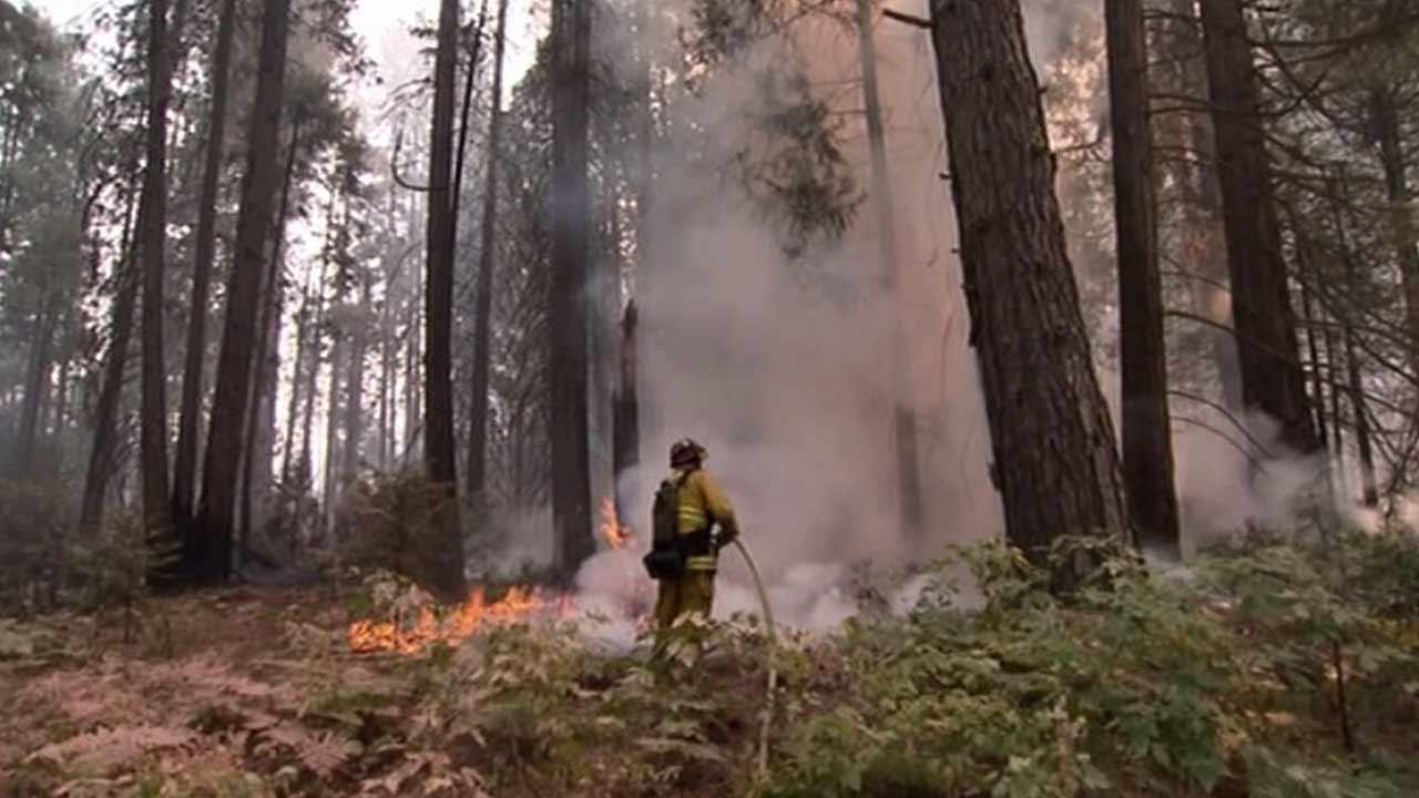 A firefighter is seen battlling a wildfire near Yosemite National Park on Saturday, Aug. 24, 2013.