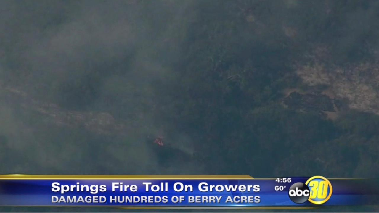 Springs Fire causes damage to SoCal growers