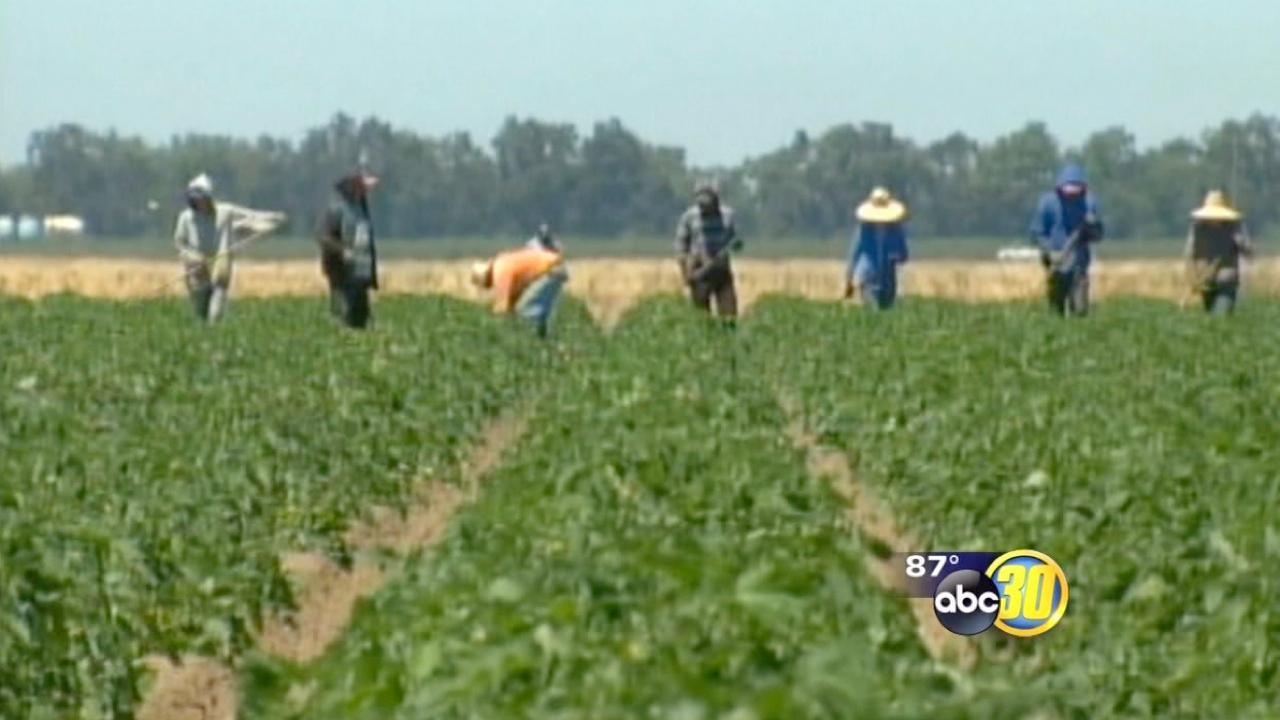 Two Valley farmworker deaths possibly heat-related
