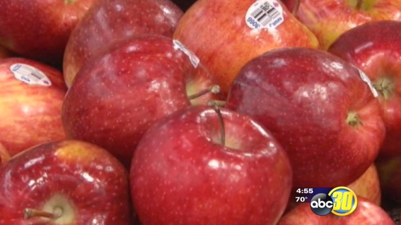 Apple season is off to a quick start