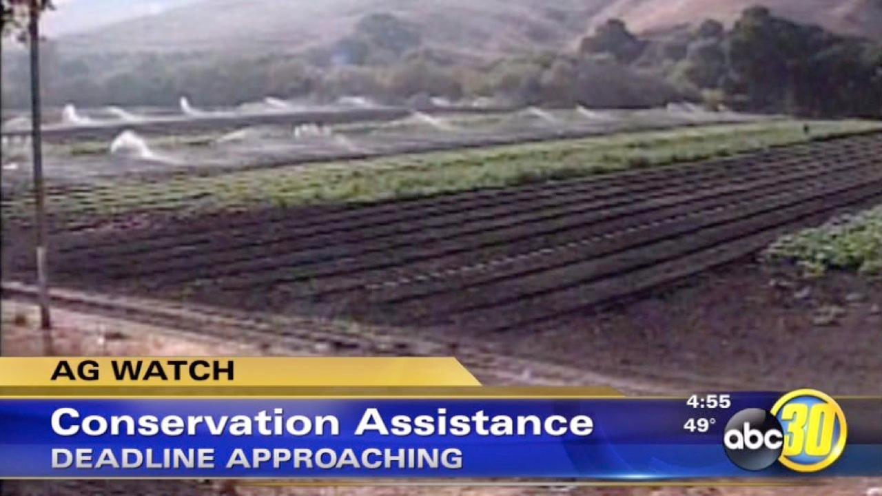 Conservation assistance deadline approaches