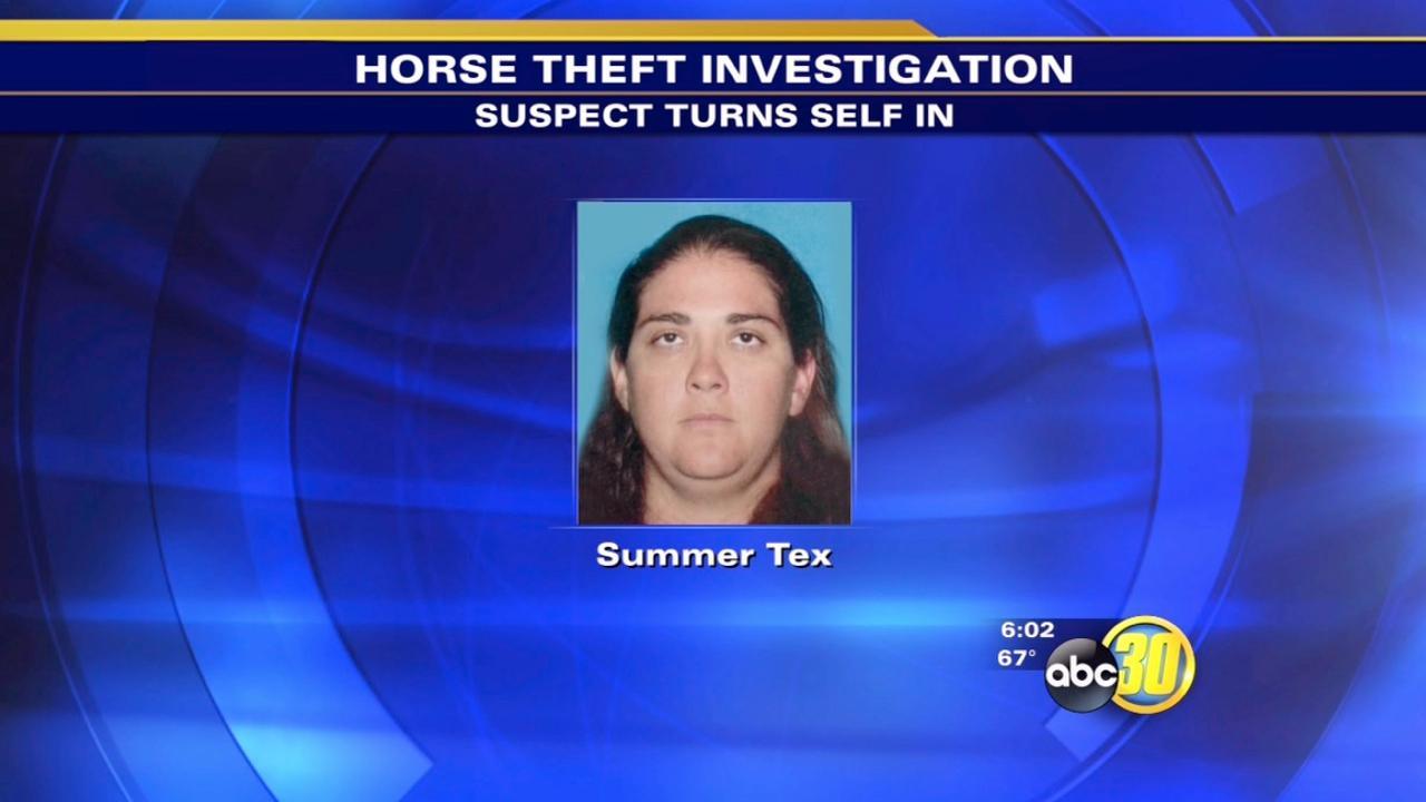 Alleged horse thief turns herself in