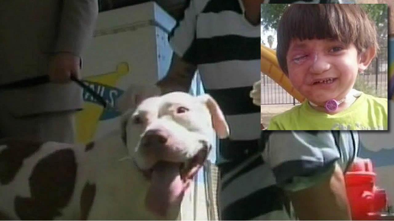Pit bull serving life sentence in Arizona jail