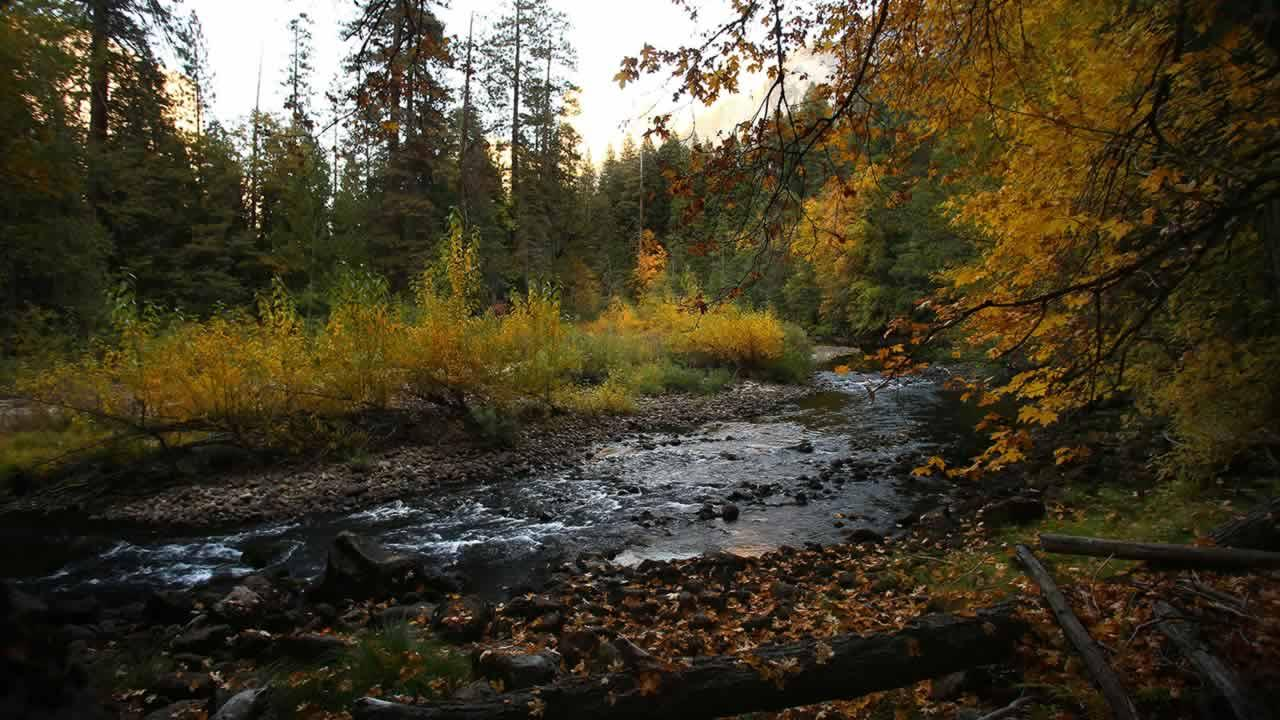 In this Oct. 17, 2013 file photo, the Merced river winds through Yosemite Valley in Yosemite National Park, Calif. (AP Photo/Gary Kazanjian, File)