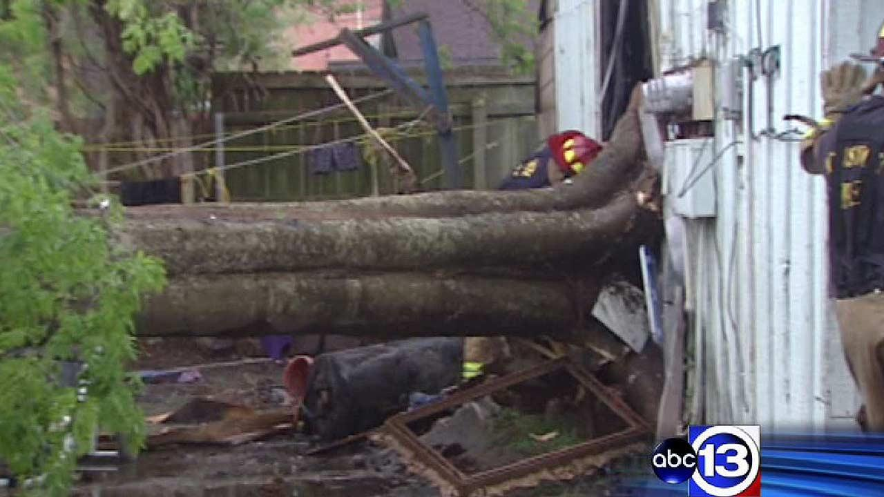 Firefighters say wind knocked over this tree, which was attached to the apartment building, and started a fire