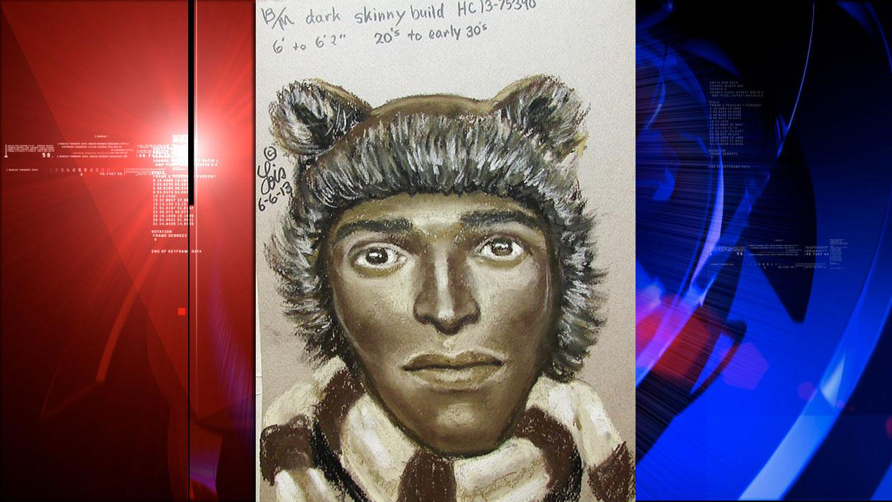 Sketch of Teddy Bear Bandit suspect