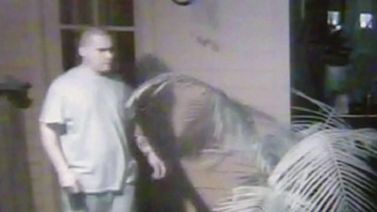 Serial burglary suspect
