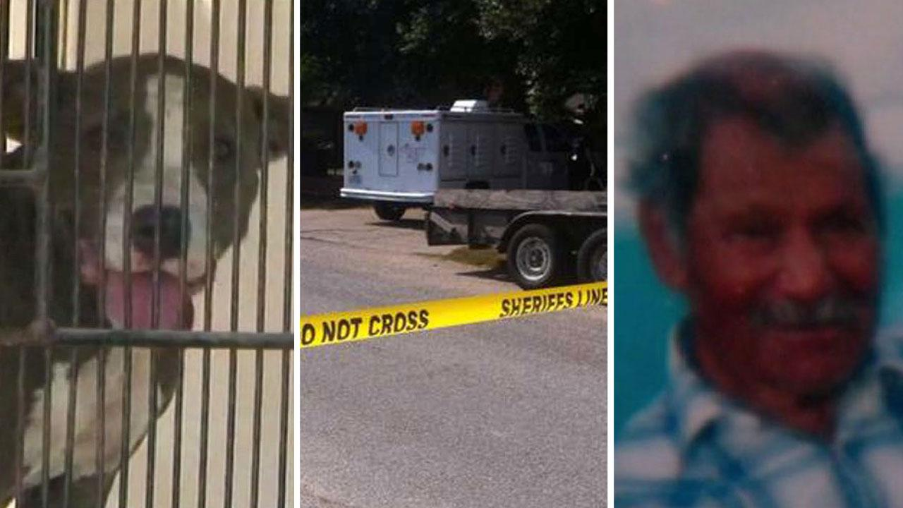 Man, 96, killed in possible dog mauling