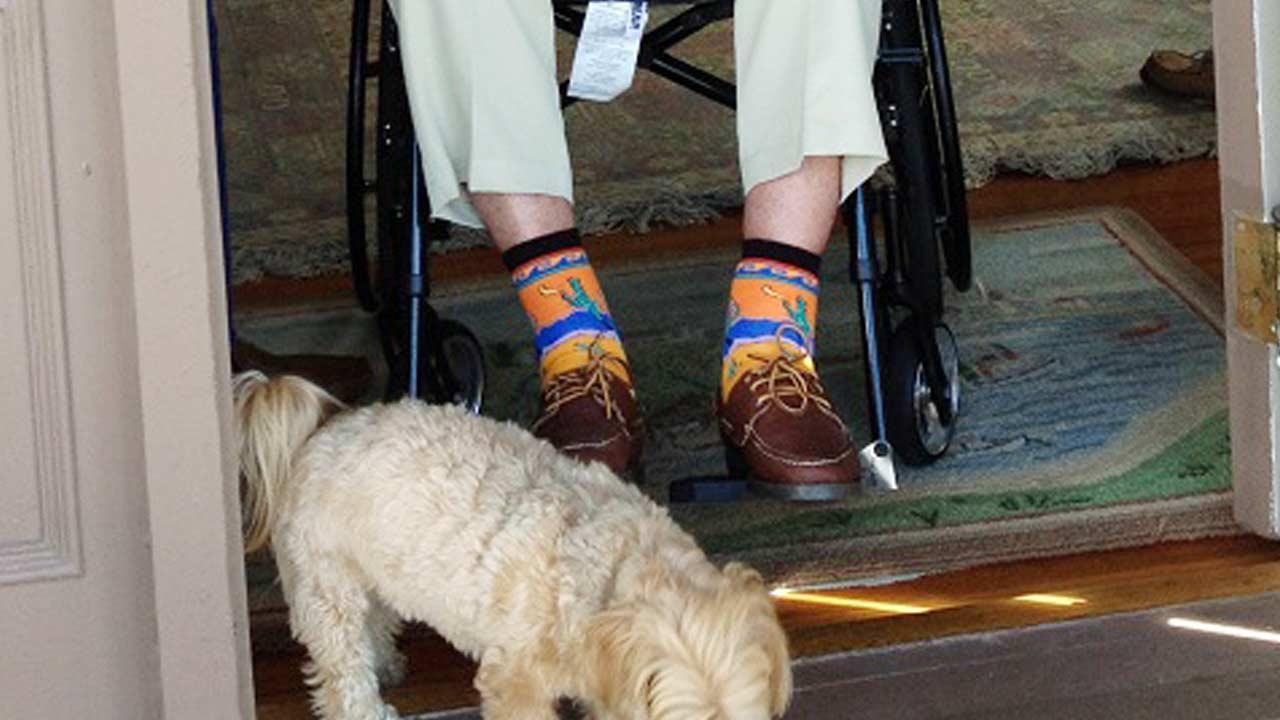 President George H.W. Bush donated his cactus-themed socks, an autographed picture of the moment, and a signed letter of authenticity to a silent auction for the Roman Catholic Diocese of Portland. (AP Photo/Clinton Foundation via the Roman Catholic Diocese of Portland )