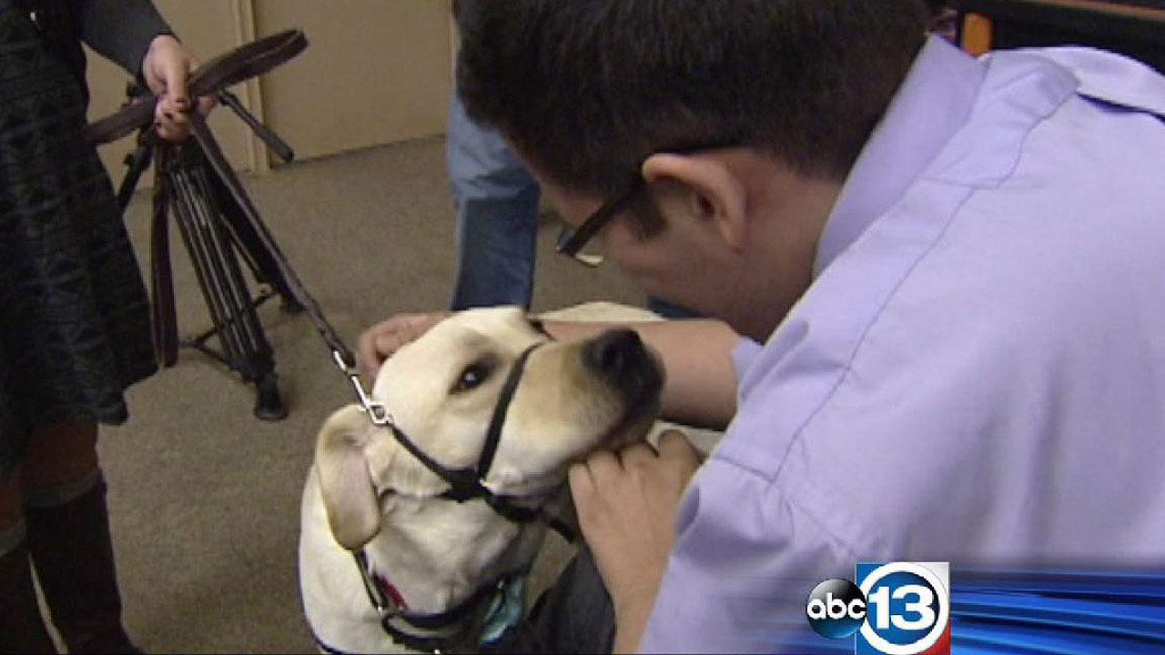 Andy Borden met his special companion service dog, Endel, for the first time