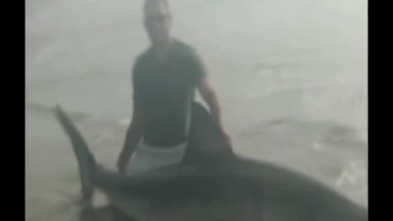 Marine reels in great white while fishing on Southern California beach