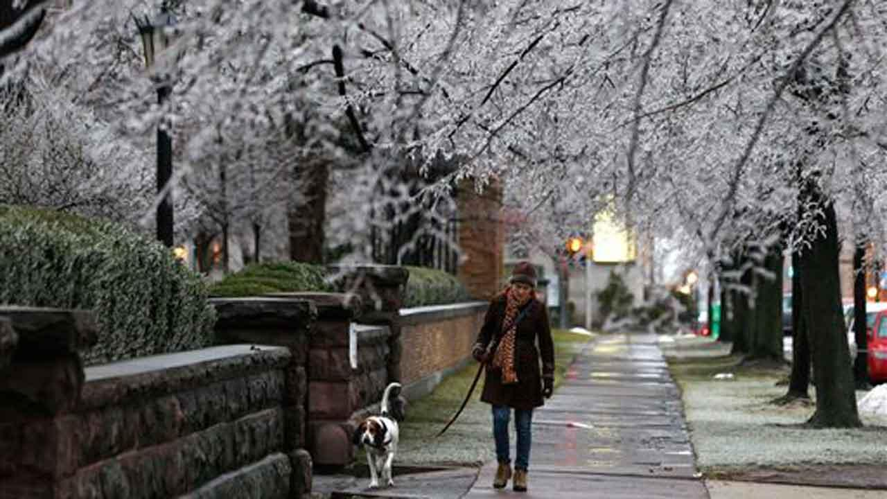Heather Griffin, of Buffalo, N.Y., and her dog Sal walk beneath ice-covered trees on Sunday, Dec. 22, 2013, in Buffalo. (AP Photo/Mike Groll)