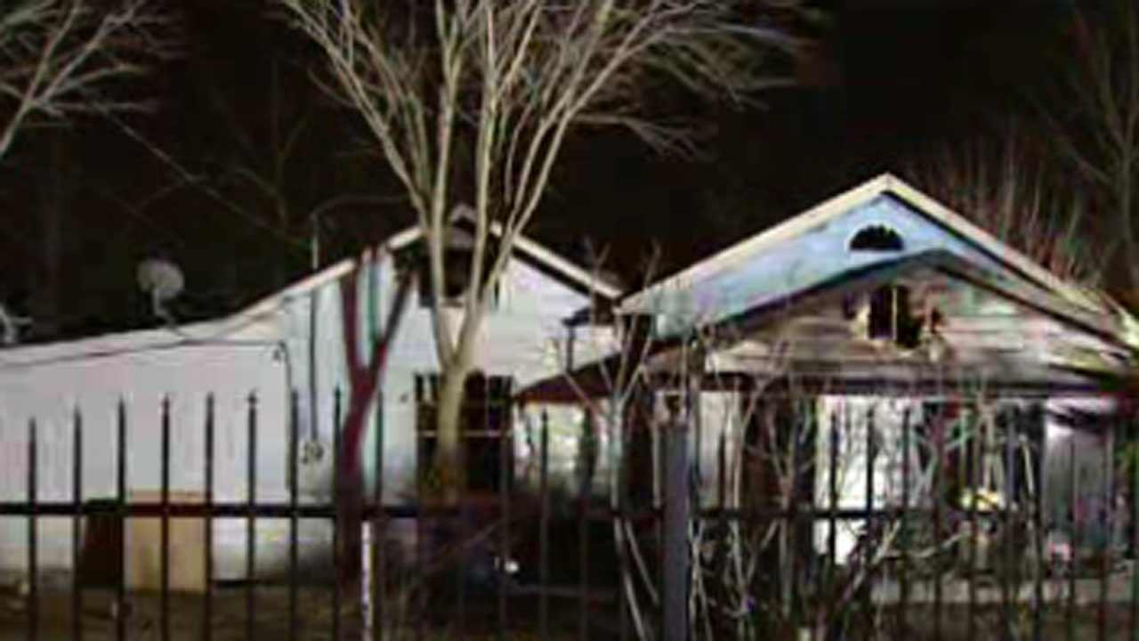 Two pets die in house fire