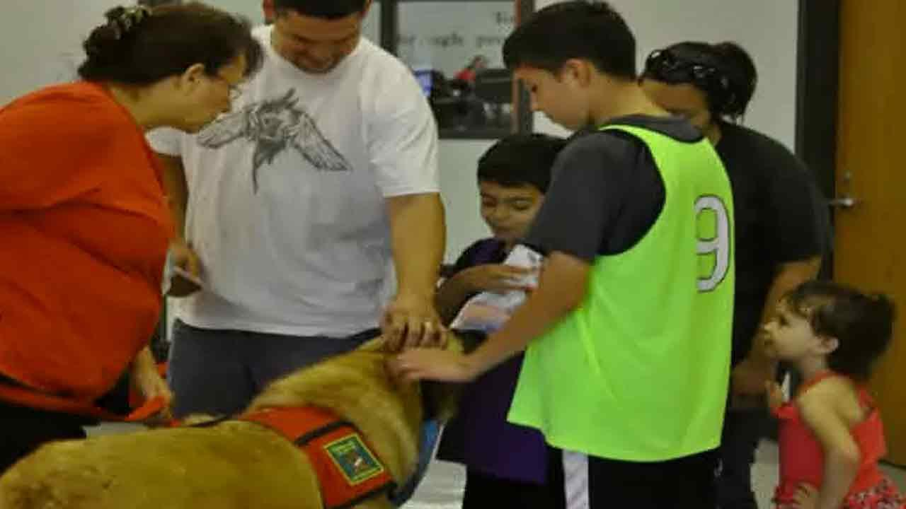 Therapy dogs teach bully prevention in Texas schools