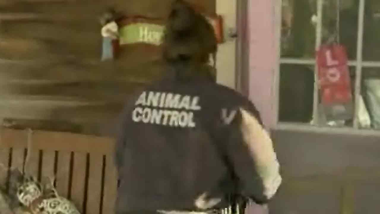 Woman attacked by rabid raccoon in her own bed