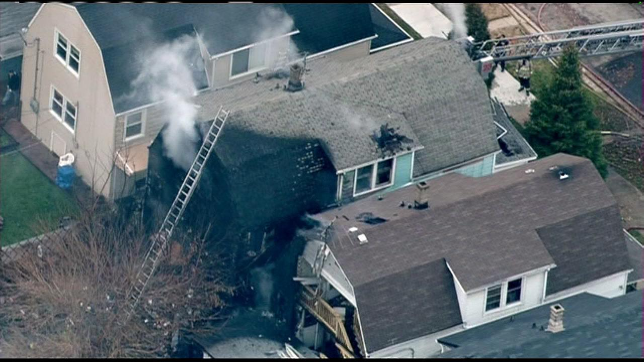 A 50-year-old man and at least 12 dogs were rescued from a fire on Chicagos Northwest Side, Monday, Nov. 26, 2012.