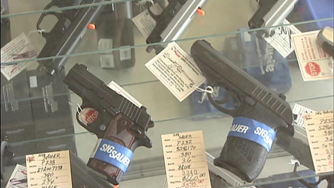Emanuel challenges judges who overturned Illinois concealed carry ban