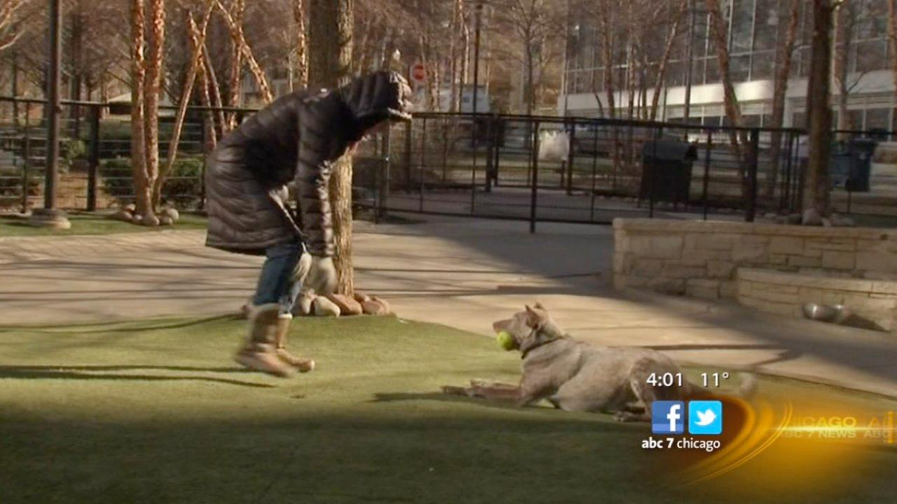 Chicago faces coldest day in two years