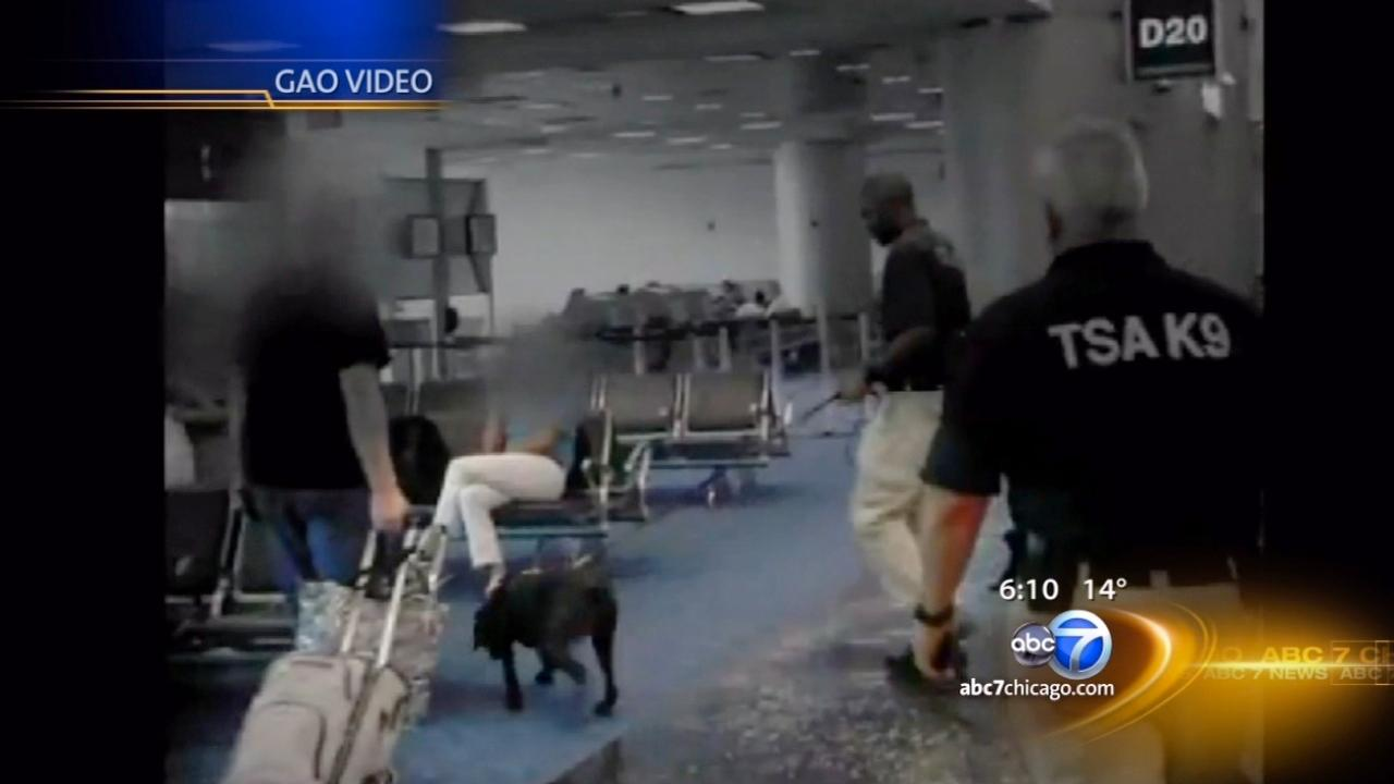 I-Team: Bomb-sniffing dogs may not be getting the job done