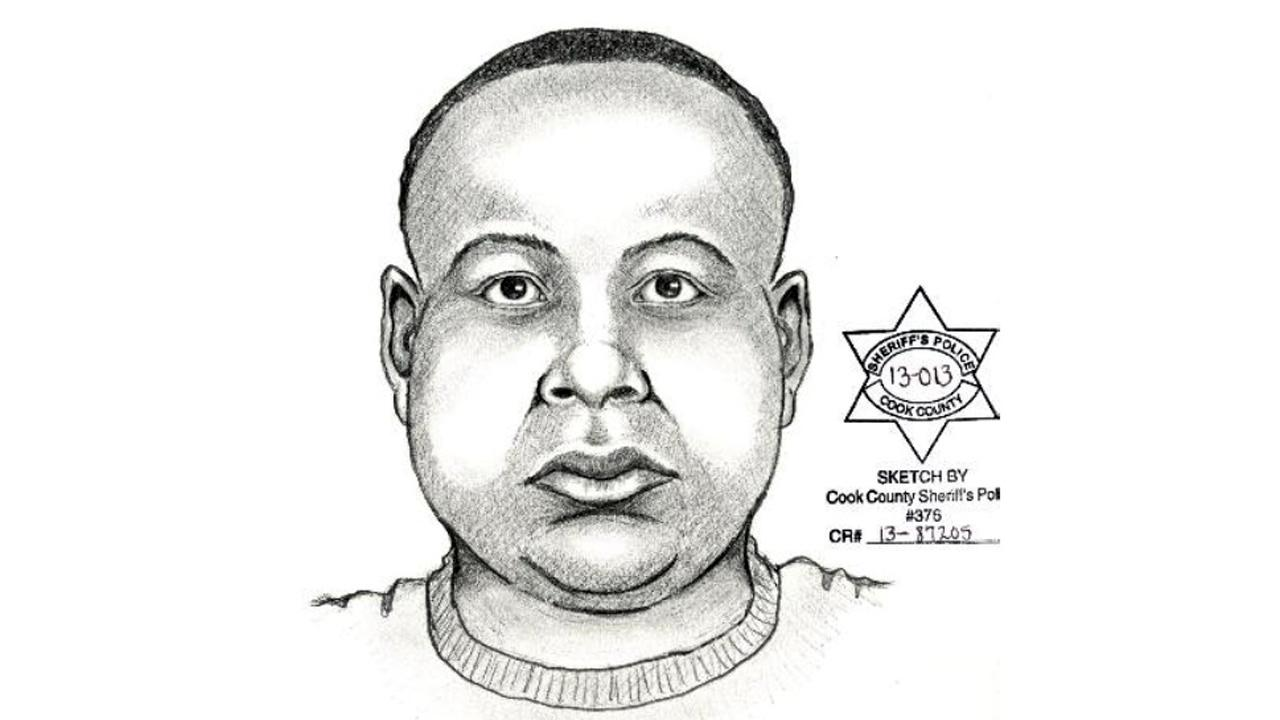Area North detectives have released a sketch of the suspect after a woman was  sexually assaulted while waiting for a bus on Chicagos North Side.