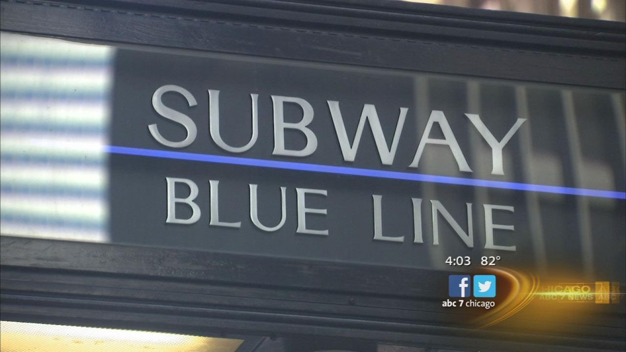 Blue Line entrance