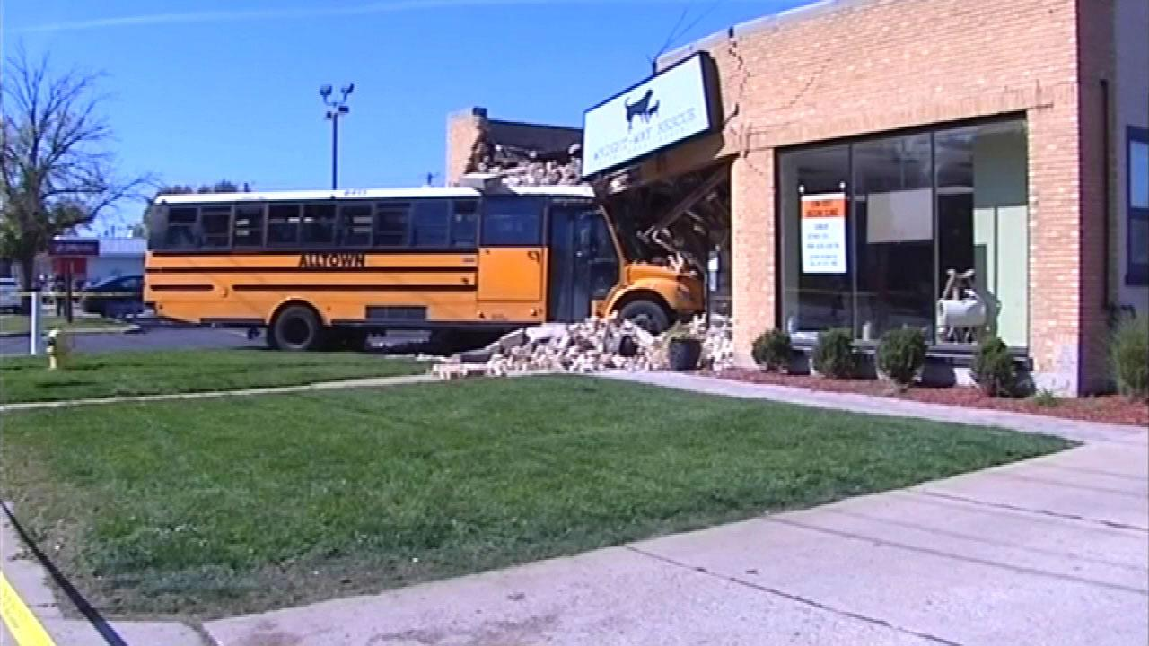 A school bus crashed into the front of an animal rescue center in the 7100-block of West Touhy in north suburban Niles Wednesday afternoon.