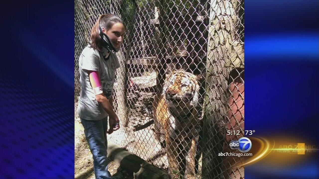 Woman attacked by tiger recovering, back at work
