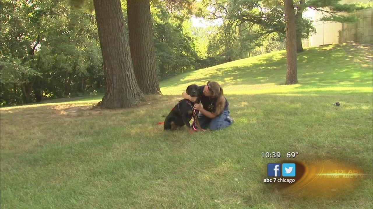 Woman reunited with stolen dog after 5 years