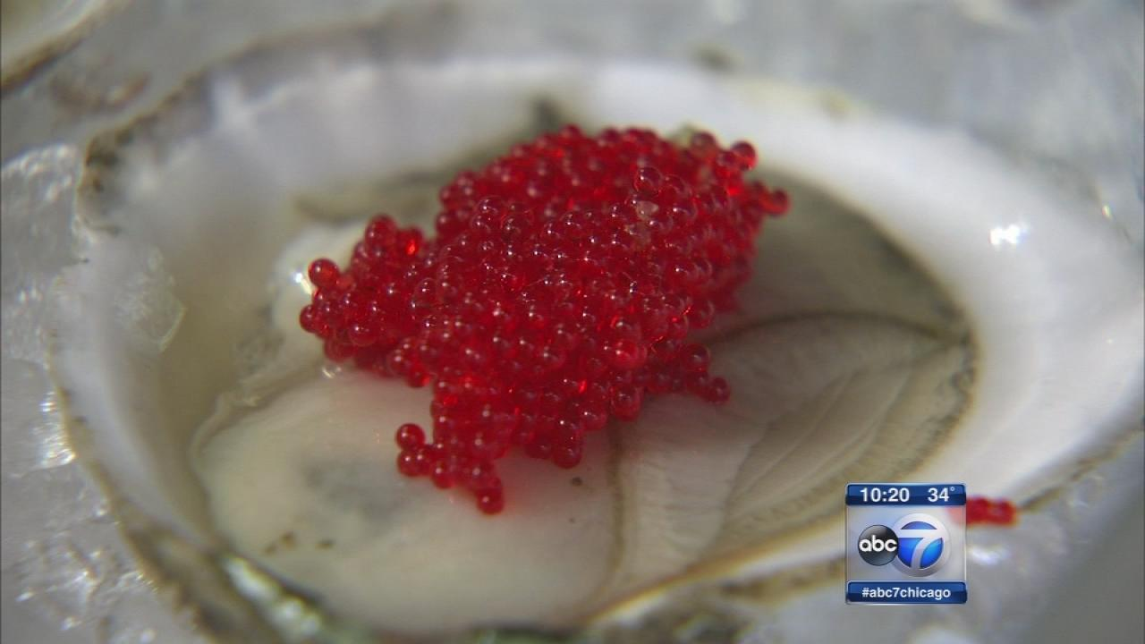 Dirks Fish caviar adds festive flair in Lincoln Park