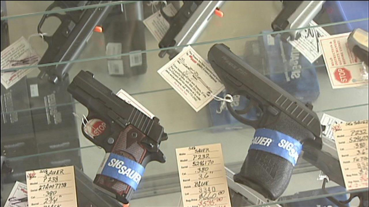 Mayor Rahm Emanuel is calling for a six-month delay on gun sales in Chicago.