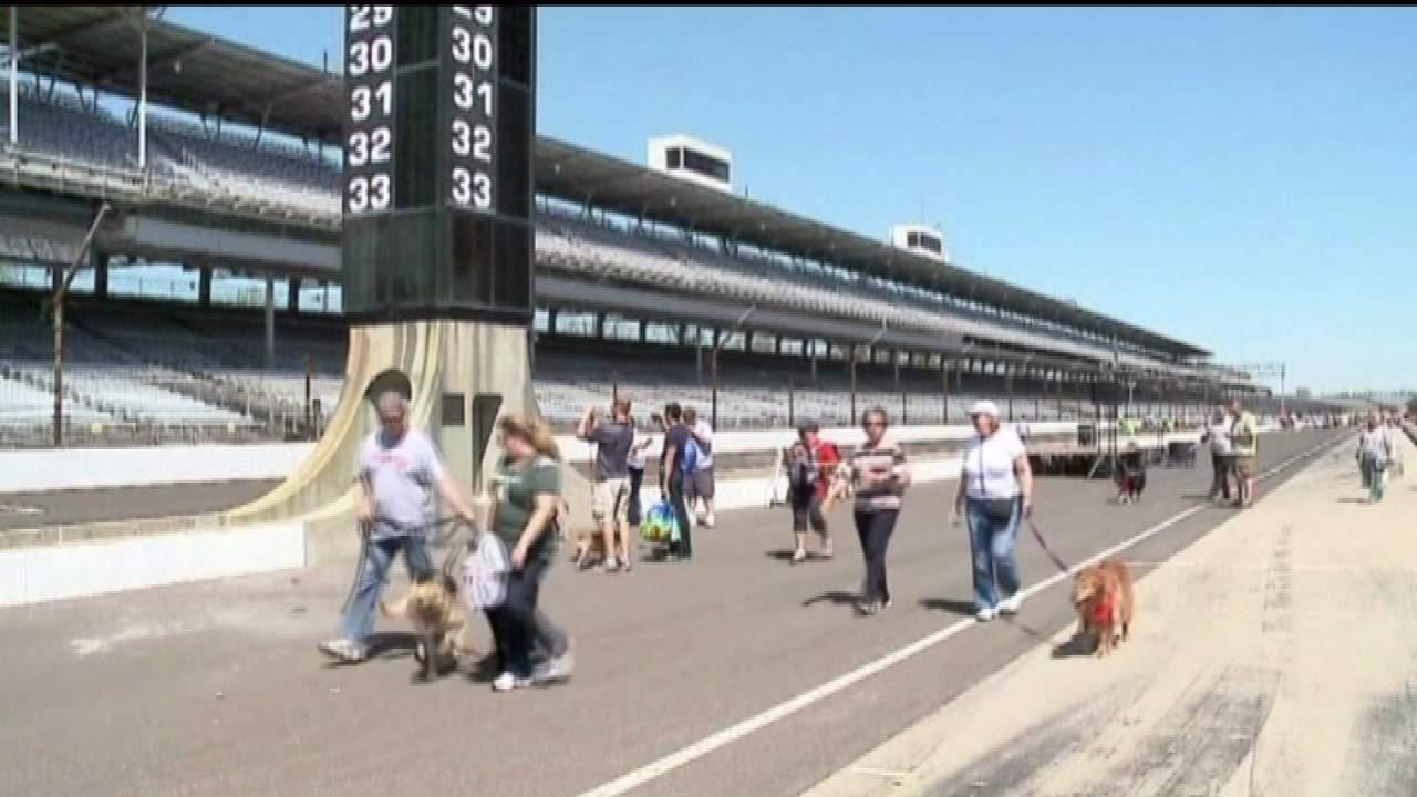 There were no cars on the track at the 11th annual Mutt Strut at the Indianapolis Motor Speedway.