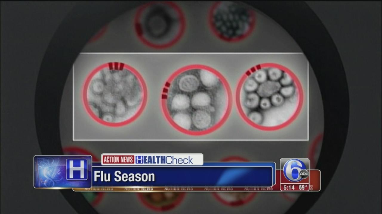 Guarding against the flu