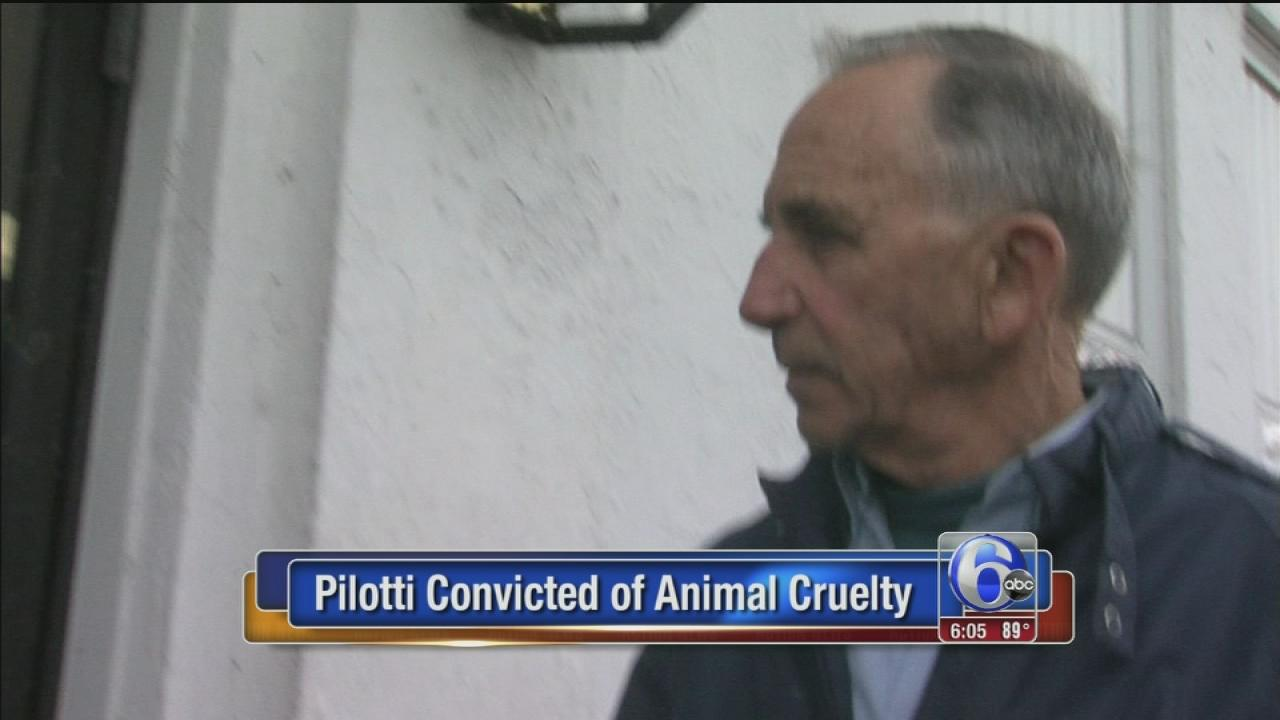 Chesco man convicted in dog shootings