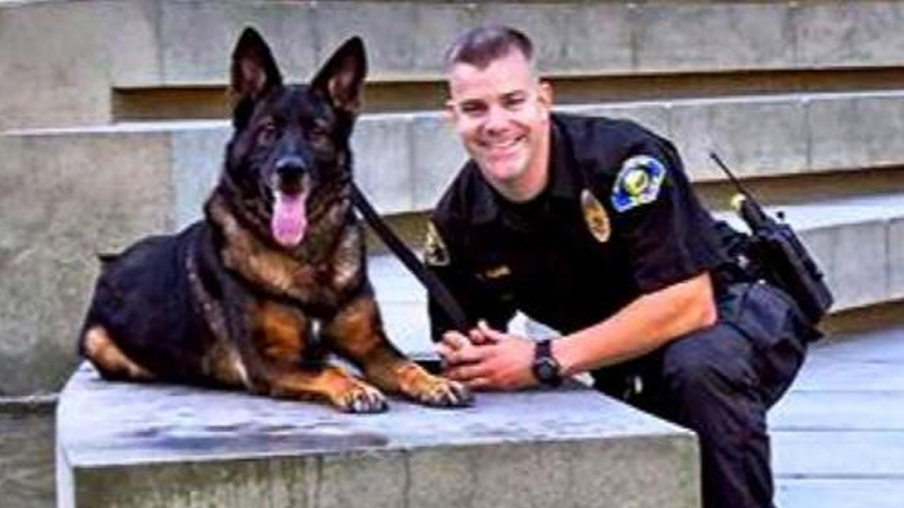 California hero police dog shot in line of duty reunited with partner