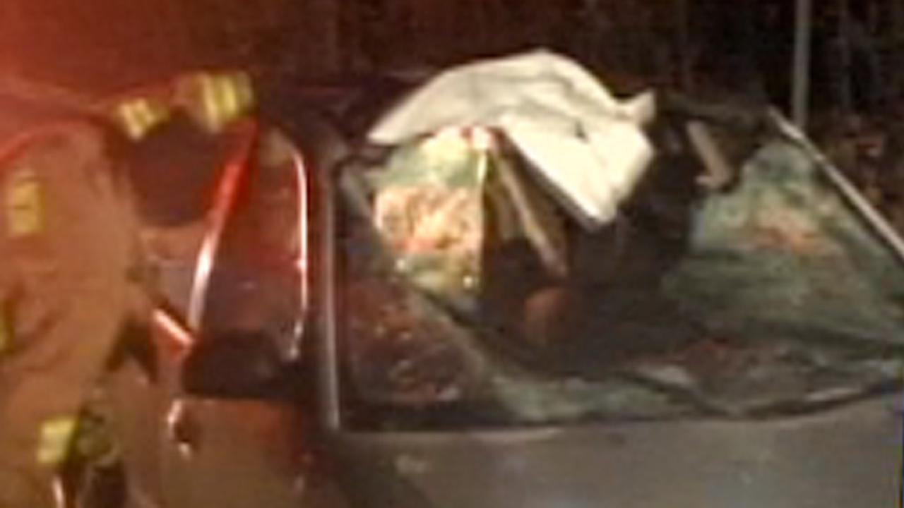 A driver in Durham was badly injured early Monday morning after he crashed head-on into a horse.