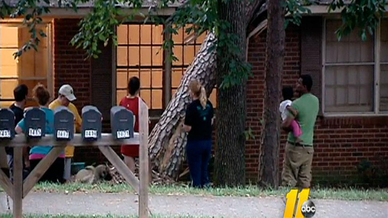 Residents at a Raleigh apartment complex were stung by bees after a tree fell on their apartment building early Monday morning.