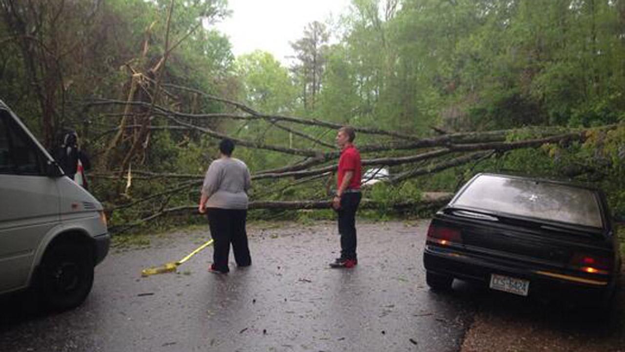 Trees down in Wake Forest