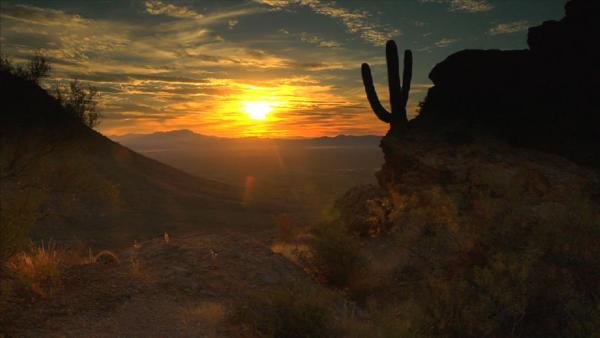 Complete Episode: Saguaro National Park