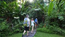 Greg and the Motion crew hike into the Tortuguero National Park.