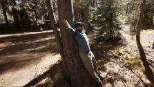 How to Stretch Before Backpacking