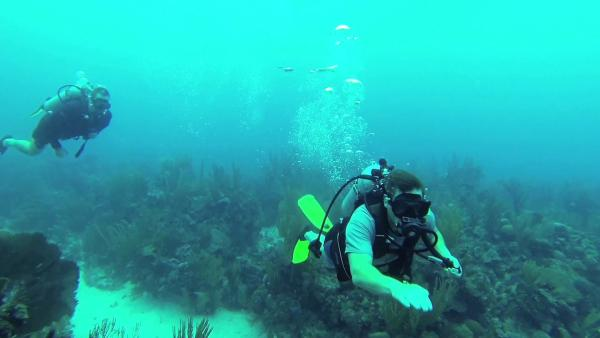 Motion Guest Overcomes Fears, Goes Scuba Diving