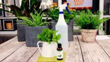 Easy Homemade Garden Solutions